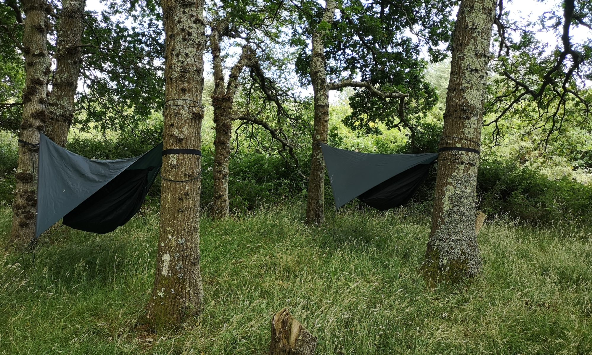 Hire a Hammock at Camp Wight